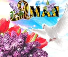 Красивая открытка на 9 мая скачать бесплатно
