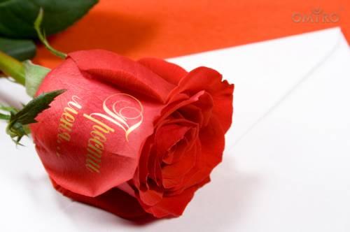 Роза с надписью Прости меня, Прости